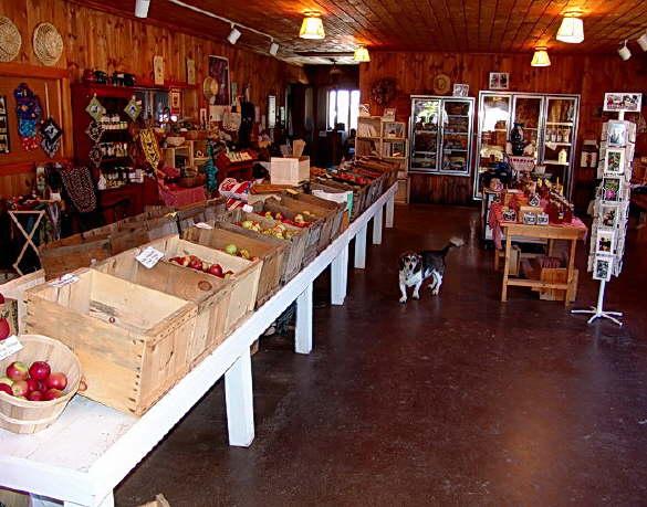 The Apple Farm Retail Store